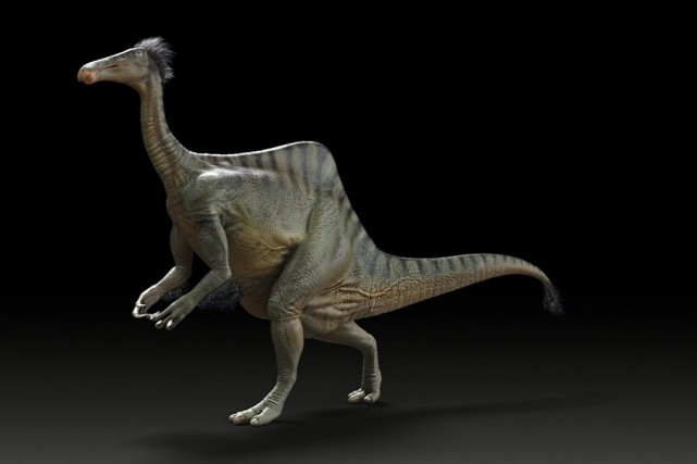 Deinocheirus... (Photo University of Alberta, PC)