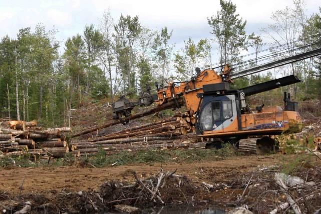 L'insatisfaction des travailleurs forestiers de Résolu est liée... ((Archives))