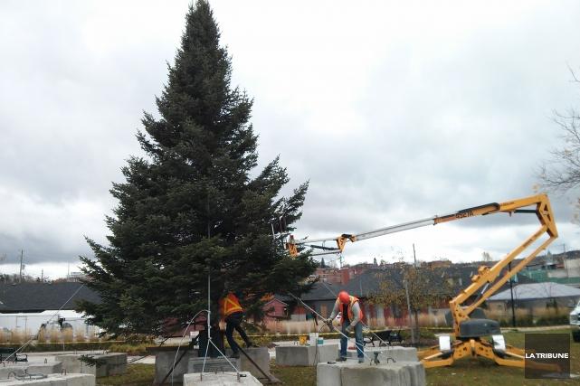 East Hereford débarque en ville au Marché de la gare avec un arbre de Noël de... (Imacom, Maxime Picard)