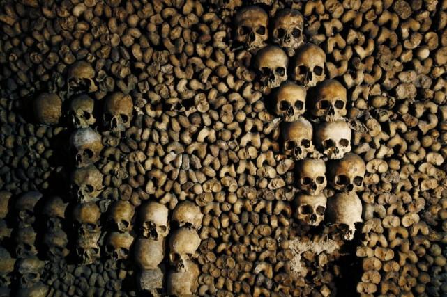 Les corps proviennent essentiellement des cimetières parisiens qui... (Photo PATRICK KOVARIK, AFP)
