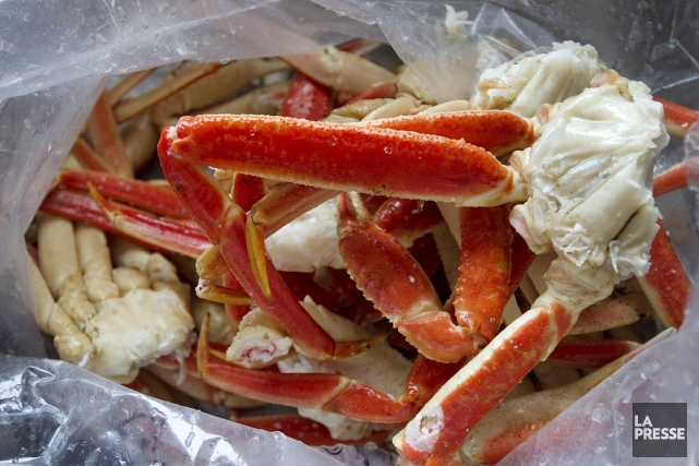 Avec son crabe des neiges, le groupe gaspésien... (Photo Robert Skinner, Archives La Presse)