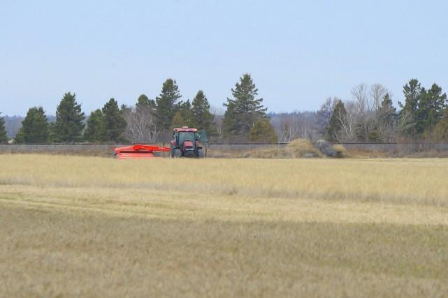 « Non à l'accaparement des terres agricoles au... ((Archives))