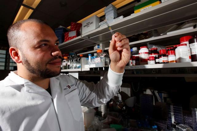 Le chercheur Jean-Simon Diallo a développé le virus... (Simon Séguin-Bertrand, Archives LeDroit)