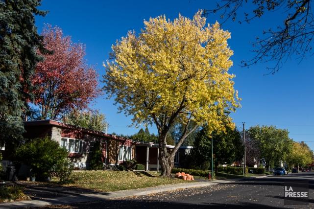 Une vue de Greenfield Park.... (PHOTO OLIVIER PONTBRIAND, LA PRESSE)