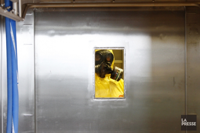 L'Organisation mondiale de la Santé (OMS) estime que... (PHOTO PETR DAVID JOSEK, AP)