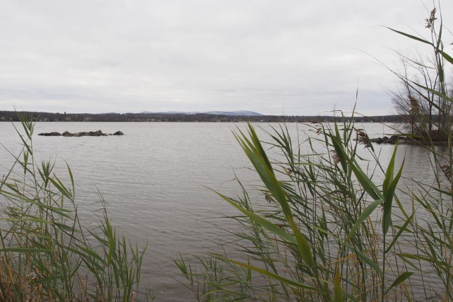 Malgré une légère amélioration, la qualité de l'eau... (photo Alain Dion)