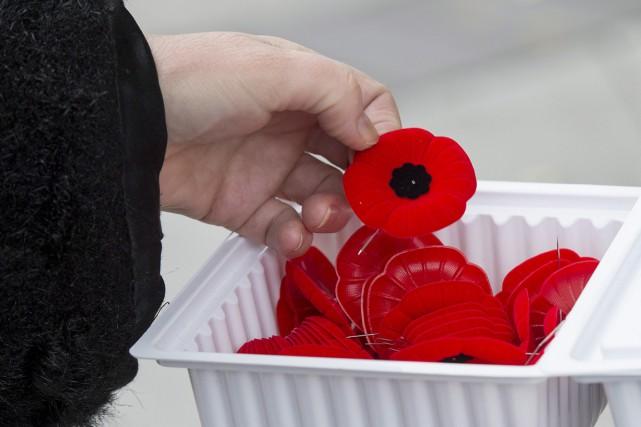 Les cérémonies du jour du Souvenir à Ottawa se dérouleront sous haute présence... (PHOTO LA PRESSE CANADIENNE)