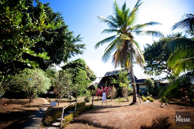 À Ojochal, près de Playa Ballena, on trouve... (PHOTO MARCO CAMPANOZZI, Archives LA PRESSE)
