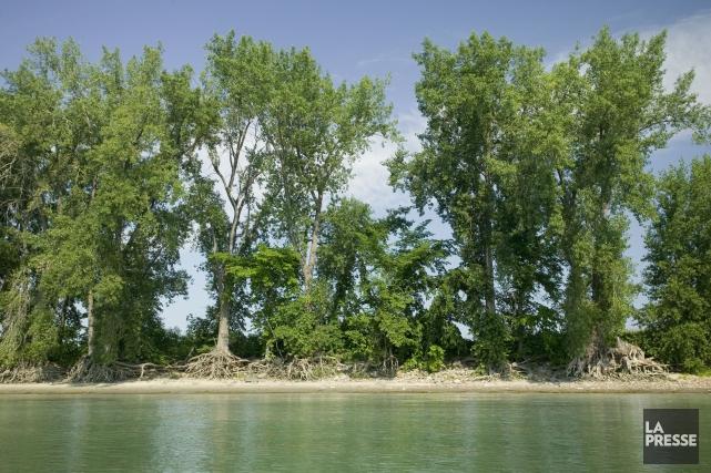 Le directeur général d'Ouranosa souligné l'érosion beaucoup plus... (Photo David Boily, archives La Presse)