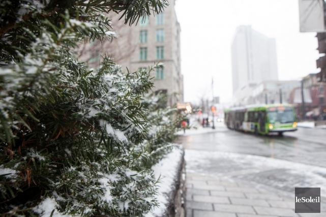 En après-midi dimanche, la neige commençait à s'accumuler... (Le Soleil, Caroline Grégoire)