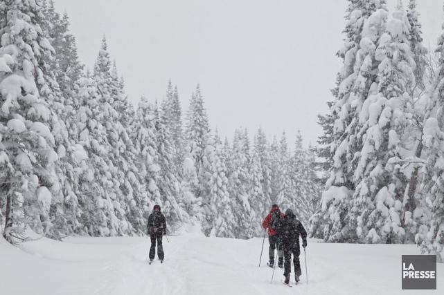 Il y a du nouveau cet hiver à la Traversée de la Gaspésie en ski de fond. Pour... (PHOTO HUGO-SÉBASTIEN AUBERT, LA PRESSE)