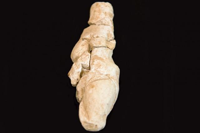Une statuette de craie représentant une figure féminine datée d'il y a 23 000... (Photo: AFP)