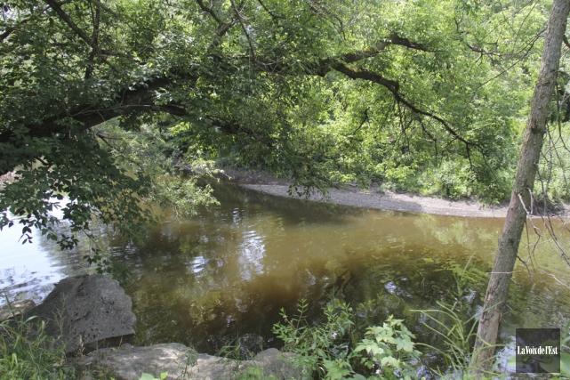 Parmi les travaux prévus au parc naturel Jacques-Bonnette,... (photo Janick Marois, archives La Voix de l'Est)