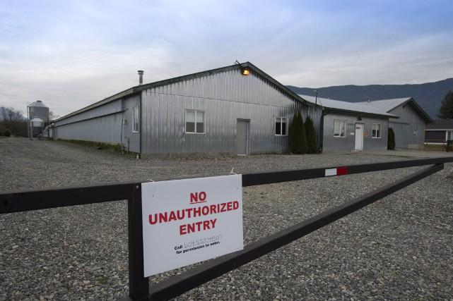Jeudi, deux autres fermes ont été isolées après... (Photo Jonathan Hayward, La Presse Canadienne)
