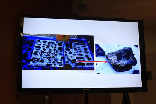 Les 17 échantillons osseux envoyés en Autriche ont... (Photo: Reuters)