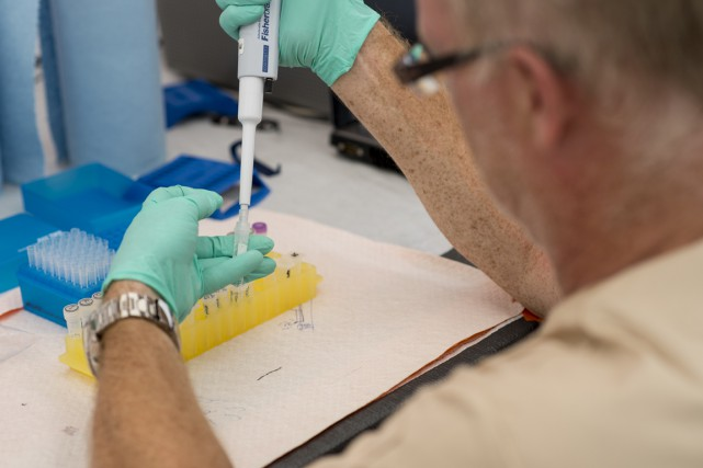 Chaque jour, le laboratoire Kailahun permet l'analyse d'environ... (PHOTO FOURNIE PAR L'AGENCE DE SANTÉ PUBLIQUE DU CANADA)