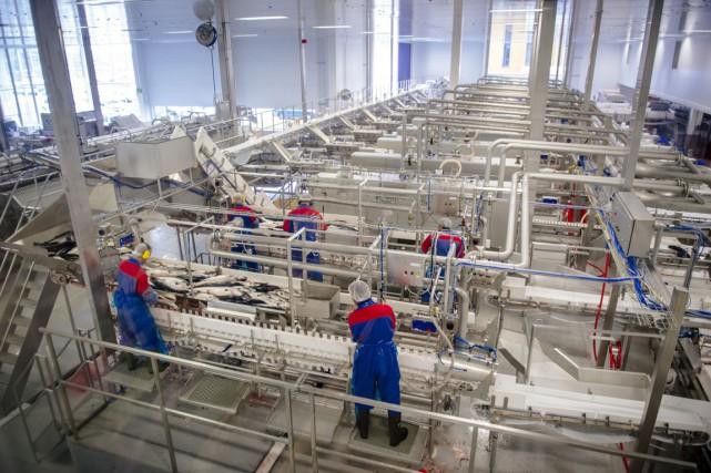 Des ouvriers travaillent dans une usine norvégienne de... (PHOTO KRISTIAN HELGESEN, ARCHIVES BLOOMBERG)