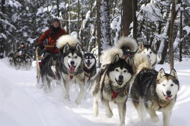 L'entreprise Secrets nordiques propose une initiation à l'univers... (Photo fournie par Secrets nordiques)