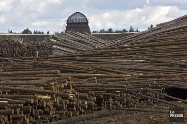 Alarmée par l'état de l'industrie forestière québécoise, une coalition... (Archives, La Presse)