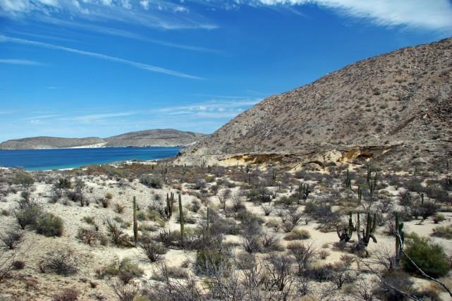 La péninsule de la Basse-Californie est un mélange... (Photo Digital/Thinkstock)