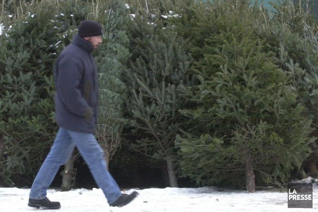 C'està compter du lundi 5 janvier que la Ville de Sherbrooke mettra en branle... (Archives La Presse)