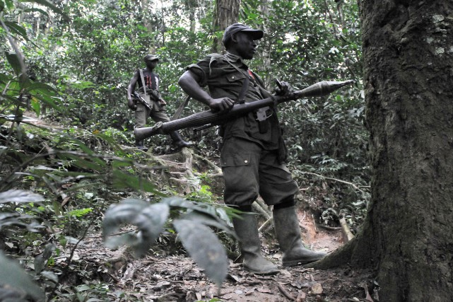 Les Forces démocratiques de libération du Rwanda (FDLR),... (Photo archives AFP)