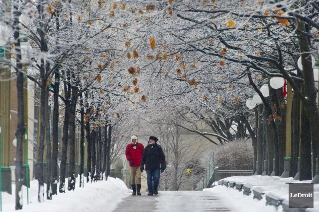 Les arbres et les trottoirs sont toujours glacés... (Martin Roy, LeDroit)