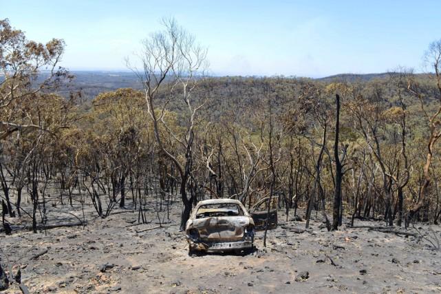Près de 13000 hectares de broussailles et de... (PHOTO BRENTON EDWARDS, AFP)
