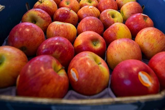 Les autorités fédérales annoncent de nouveau, jeudi, le rappel de pommes Granny... (PHOTO ARCHIVES BLOOMBERG)