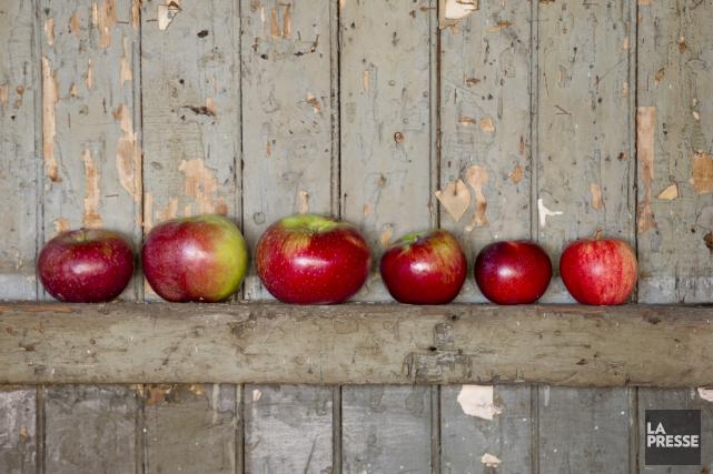 Les autorités fédérales annoncent de nouveau, jeudi, le rappel de pommes Granny... (Archives La Presse)