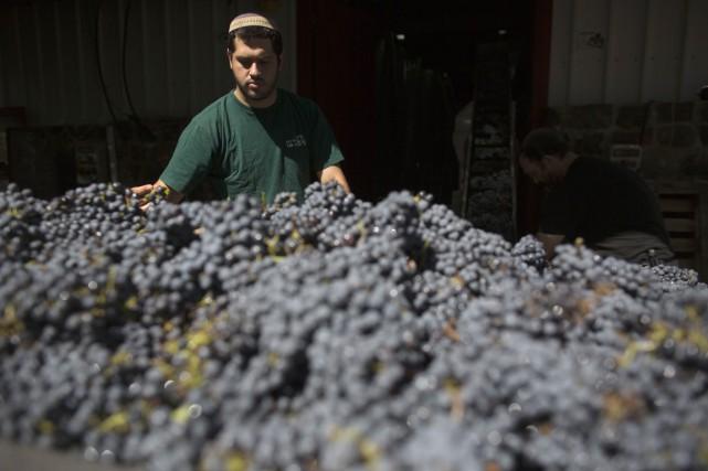 Cinq à sept millions de bouteilles de la... (PHOTO MENAHEM KAHANA, ARCHIVES AFP)