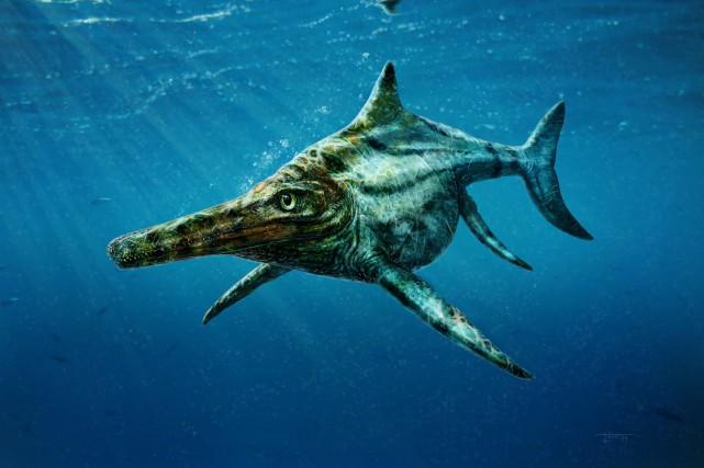 Une représentation du reptile géant identifié en Écosse.... (PHOTO AGENCE FRANCE-PRESSE)
