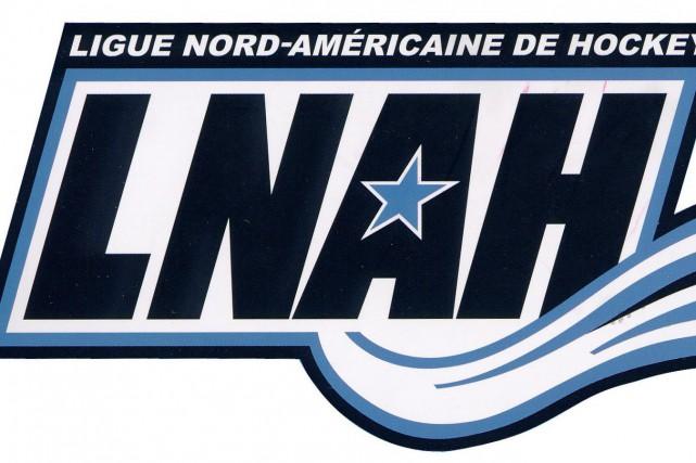La Ligue nord-américaine de hockey a continué de sévir à la suite de la bagarre... (Photo tirée internet)