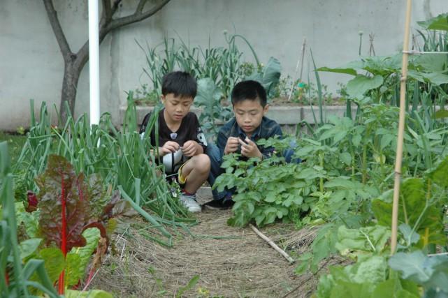 Les enfants qui se voient permettre de jouer à l'extérieur seuls ou avec des... (Photo AP)