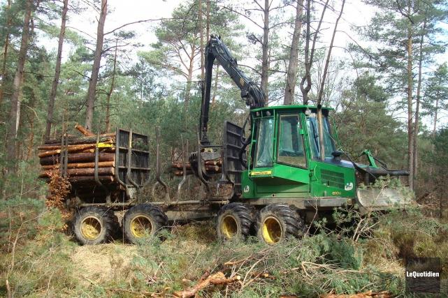 Si une grève était déclenchée, l'industrie forestière serait... ((Archives Le Quotidien))