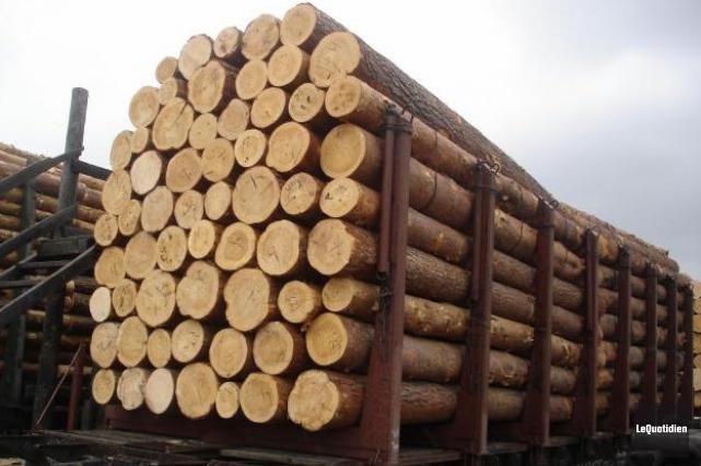Les membres du Syndicat des producteurs de bois... ((Archives Le Quotidien))