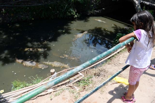«Avec cette sécheresse, on manque souvent d'eau et... (PHOTO VANDERLEI ALMEIDA, ARCHIVES AFP)
