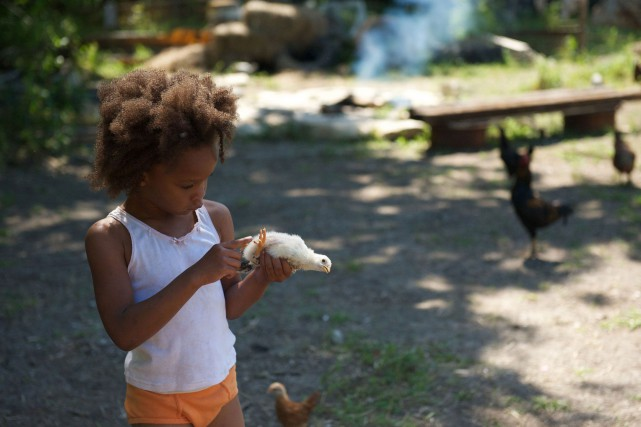 Beasts of the Southern Wild ... (Photo Media Films)
