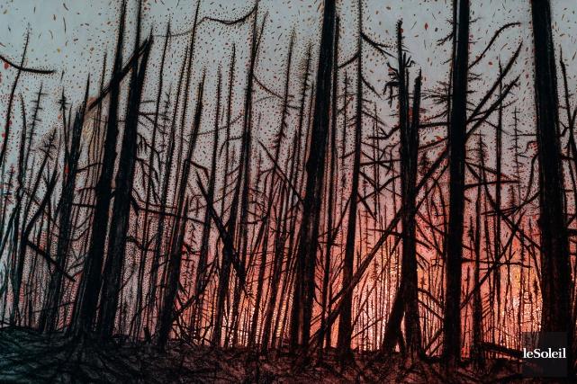 L'incendie a réduit 600 km de la forêt... (Le Soleil, Jean-Marie Villeneuve)