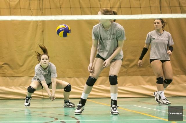 L'équipe féminine de volleyball du Vert & Or... (Imacom, Jocelyn Riendeau)