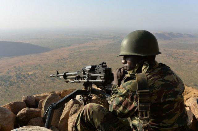 Le Cameroun utilise des drones pour recueillir des... (PHOTO REINNIER KAZE, AFP)