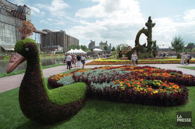 Les Mosaïcultures internationales de Montréal.... (Archives La Presse)