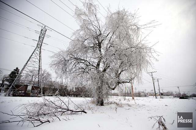 Le temps froid a favorisé une hausse de... (Photo David Boily, archives La Presse)