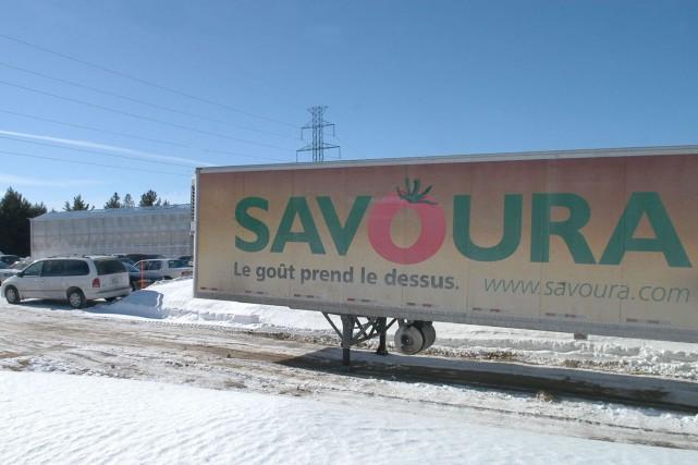 En passe avec des difficultés financières, les Serres du Saint-Laurent, qui... (Photo: Stéphane Lessard)