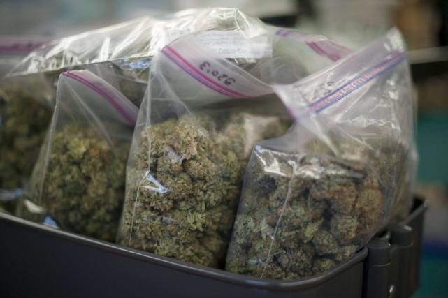 Les beaux jours de la marijuana médicinale sont bel et bien terminés depuis que... (PHOTO JONATHAN HAYWARD, ARCHIVES PC)