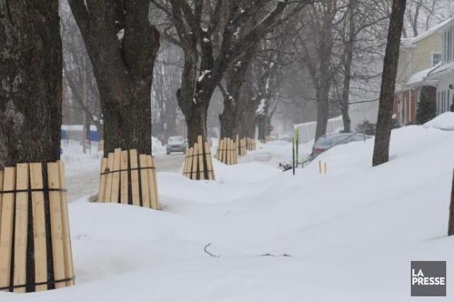 Depuis le début de l'hiver, le déneigement du trottoir sur la rive québécoise... (Archives)
