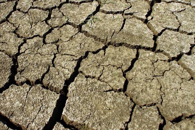 Entre 2006 et 2010, la pire sécheresse jamais... (PHOTO ARCHIVES AP)