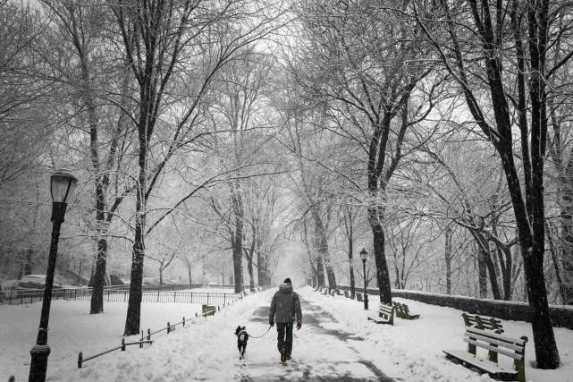 Un homme se promène avec son chien dans... (PHOTO MIKE SEGAR, FREUTERS)