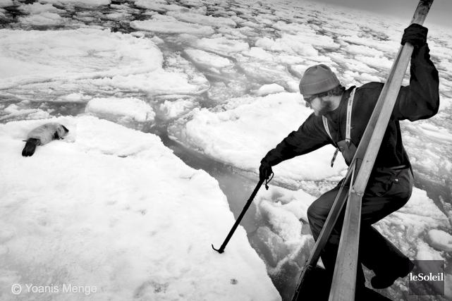 Des pêcheurs de la Gaspésie et des Îles-de-la-Madeleine... (Photothèque Le Soleil)