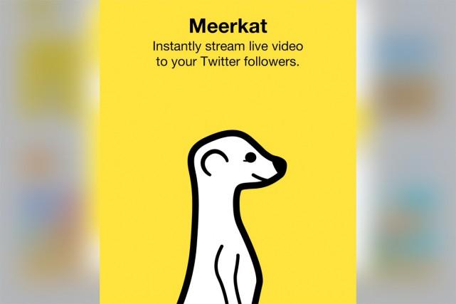 Meerkat - le nom du suricate, un petit... (CAPTURE D'ÉCRAN)